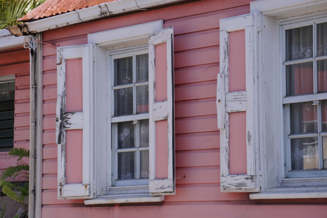 Windows in pink
